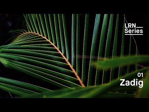 Zadig - LRN Series #01