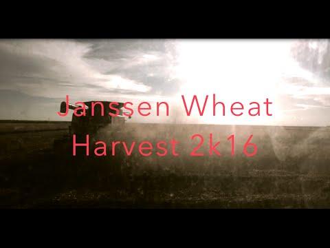Janssen Wheat Harvest 2k16 Scott City, Kansas