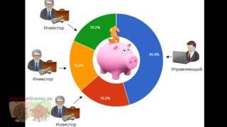 видео 12 правил для успешного инвестирования в PAMM счета