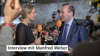 Interview mit Manfred Weber