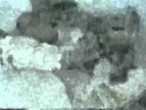 the rub - george bush is an islamic fundamentalist