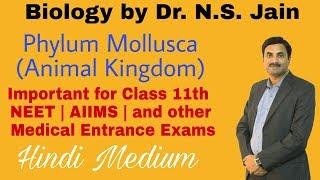 Phylum Mollusca (Animal Kingdom) for Class 11th Hindi Medium
