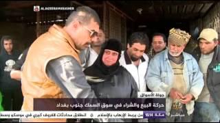 شاهد.. جولة في سوق علوة لتجارة الأسماك ببغداد