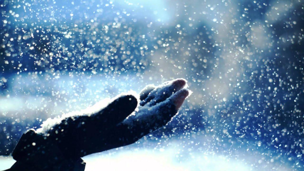 雪のクリスマス / DREAMS COME T...