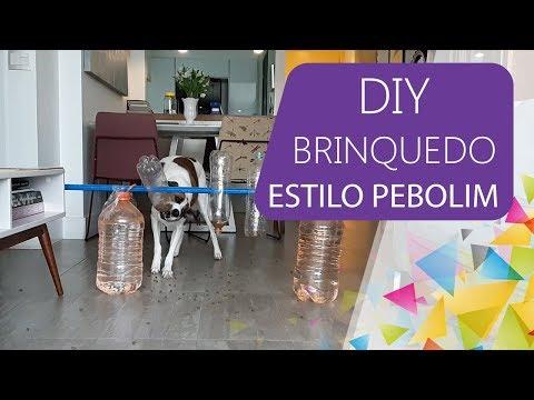 Brinquedo Inteligente Para Cachorro DIY