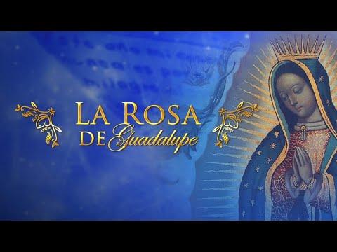 La Rosa De Guadalupe Ser Feliz 2/2