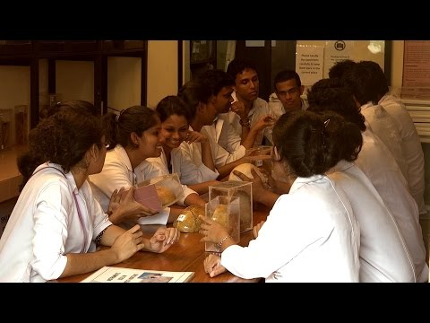 Faculty of Medicine, University of Kelaniya - A day in the Life