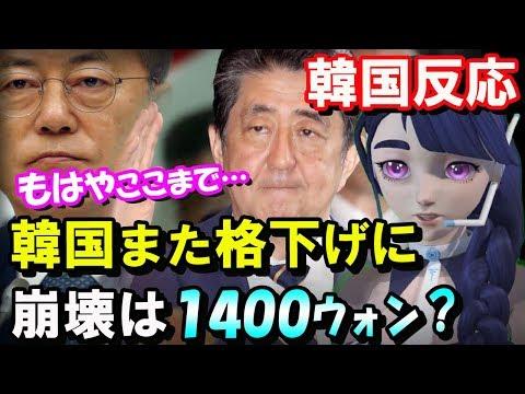 【韓国の反応】日本、防衛白書で韓国を格下げに…企業一斉格下げも待ったなし!通貨1400ウォンまで容認か