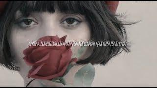 Melanie Martinez - Piggyback  (Türkçe Çeviri)