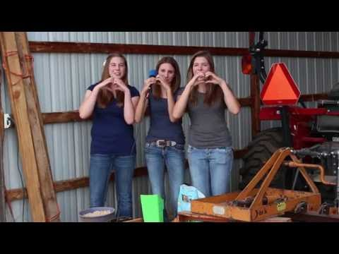 Three Girls, Three Pigs and the 4H Experience