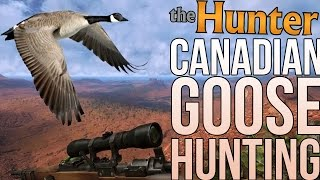 The Hunter Game - Canadian Goose Hunting - The Hunter Gameplay