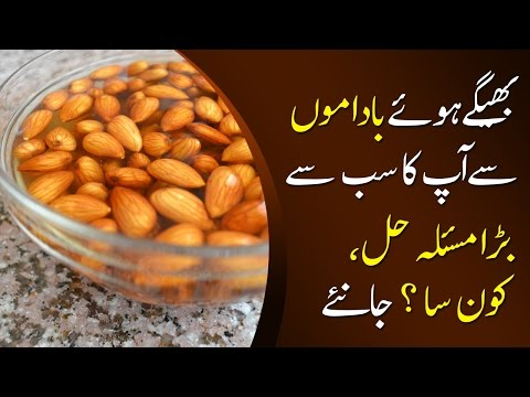 Badam Bhigo Ke Khane Ke Fawaid Samnay Aa Gaye | Almond Benefits In Urdu/Hindi