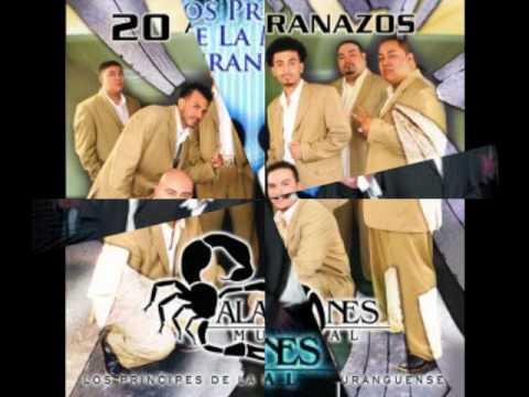 Donde Esta Alacranes Musical