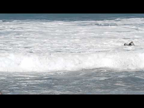 Bodyboarder Rescues Unconscious Pro Surfer