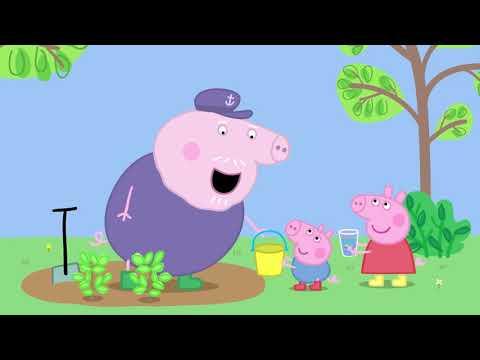 小豬佩奇 第六季1 13 中文版合集 1小時連續看 Peppa pig Chinese Edition