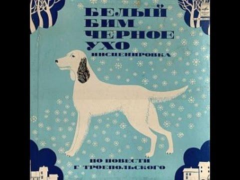 Белый Бим Черное ухо: Аудиосказки - Сказки - Сказки для детей