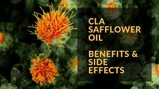 CLA Safflower Oil. Benefits and Side Effects.