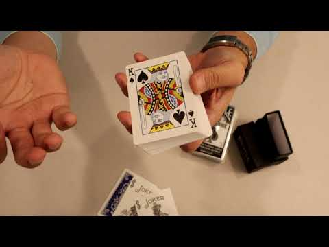 Bicycle Prestige Vs Bullets Plastic Playing Cards