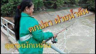 Fishing ตกปลากด ฝายน้ำล้น สูตรหมักเหม็น EP7