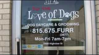 Fur The Love Of Dogs Spring Grove Illinois
