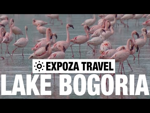 Lake Bogoria Vacation Travel Video Guide