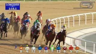 Vidéo de la course PMU AL BASTAKIYA