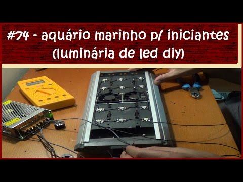 Aquário Marinho Para Iniciantes (Luminária de LED DIY) - #EP74