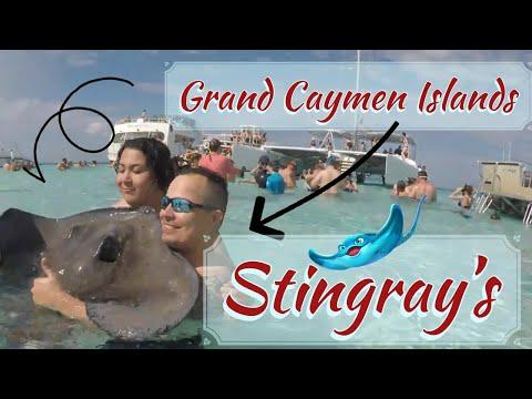 Grand Caymen Island/Stingray Island & Snorkeling