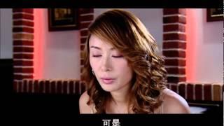 人证Witness第6集(主演:王志飞、娟子、张恒、白凡)