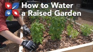 Do My Own Gardening - How to Water a Raised Garden Bed