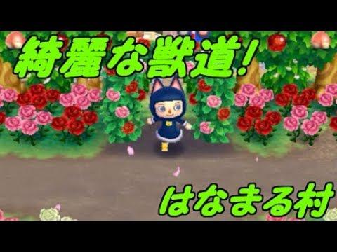 とびだせどうぶつの森amiibo+綺麗な獣道が特徴の村に行ってみたとび森夢レポ3字幕実況