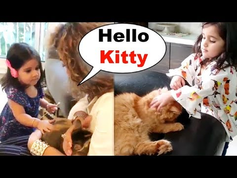 Bella And Vienna Playing With Cat   New Video 2019