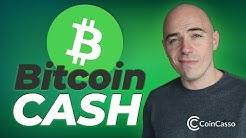 Bitcoin Cash Explained [Bitcoin Hard Fork]