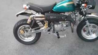 monkey street fighter daytona 190cc 4valve engine