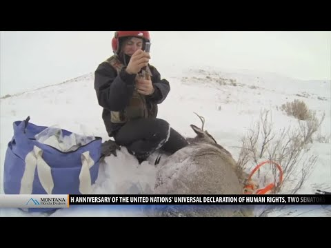 CWD threat moves closer to Yellowstone National Park