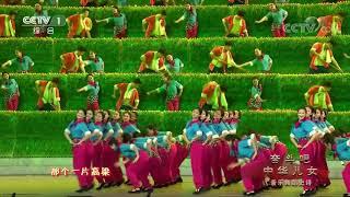 [奋斗吧中华儿女]《在希望的田野上》 领舞:刘珂 谢素豪| CCTV
