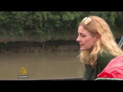28208 rizne Archéologie Al Jazeera WWII shipwrecks sold as scrap in Indonesia