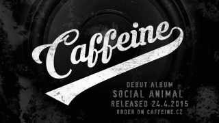 [3.01 MB] Caffeine - Set The Stage