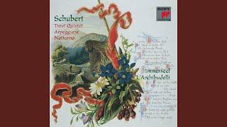 IV. Tema, Andantino - Variations I-VI - Allegretto