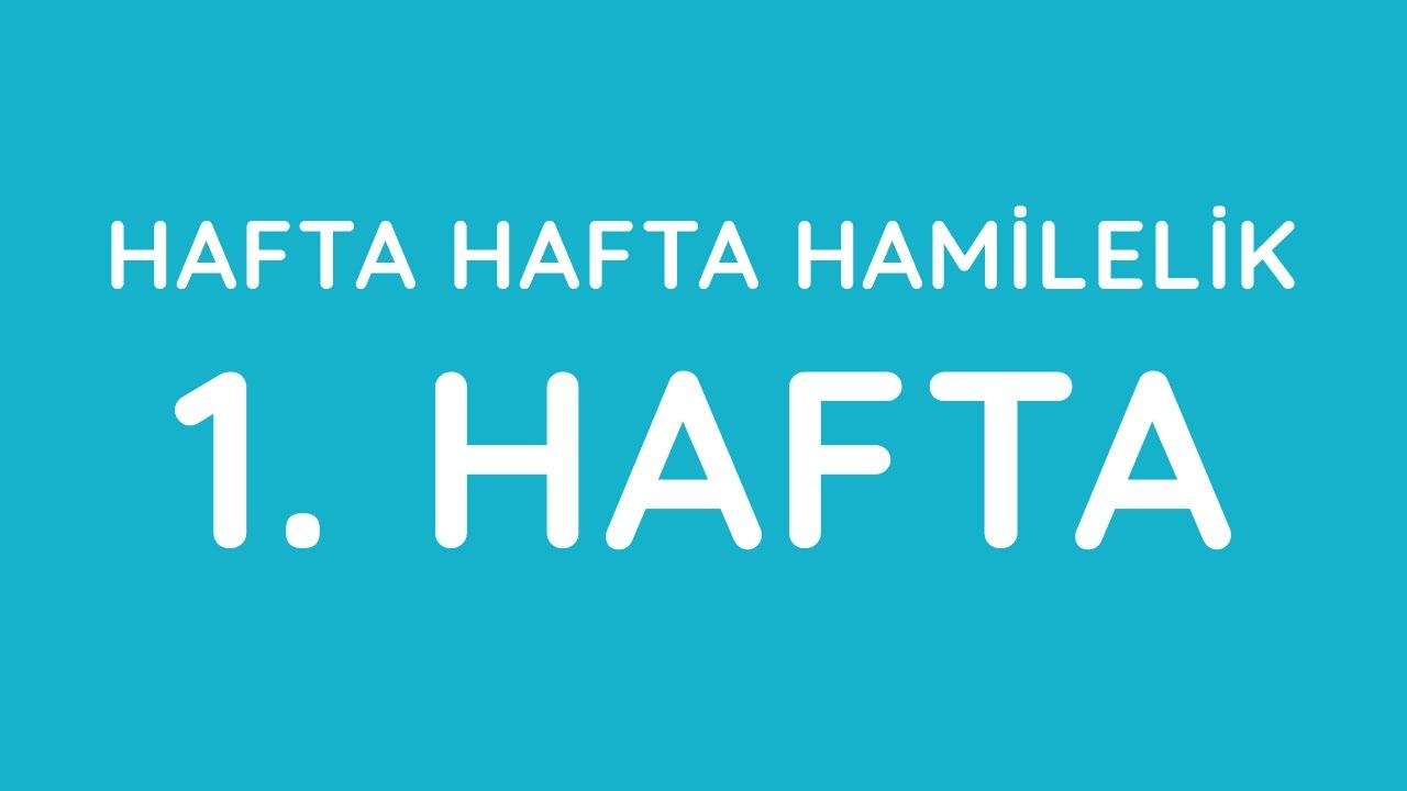 Download 1.Hafta - Hafta Hafta Gebelik - Hamilelik | Anneysen.com