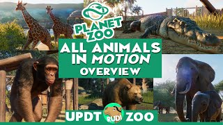 ALL ANIMALS in Motion (we know so far) - PLANET ZOO Update