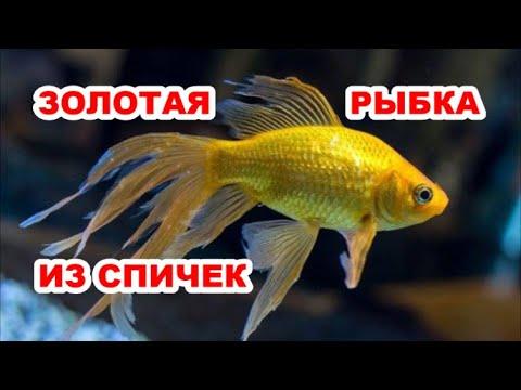 Как Сделать Золотую Рыбку Своими Руками Из Спичек