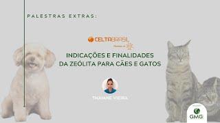 ZEÓLITA, INDICAÇÕES E FINALIDADES PARA CÃES E GATOS - Thaiane Vieira, Celta Brasil para GMG