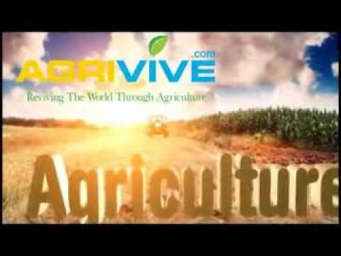 Bulk Grains Sales, Grain Trade, Grain Futures Trading, Trading Grain Futures, World Grain Trade