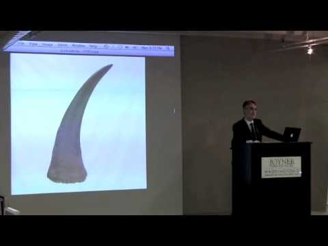 carbon dating rhino horn