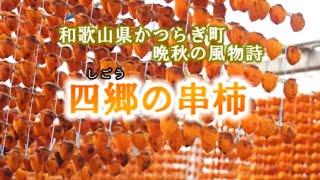 四郷の串柿 和歌山県かつらぎ町晩秋の風物詩