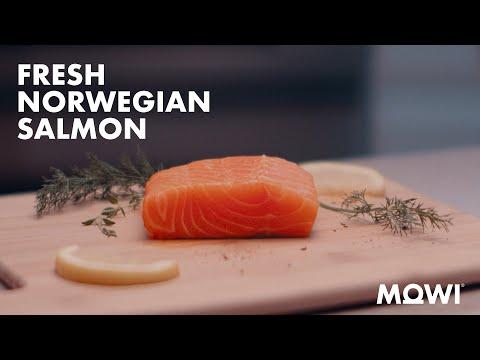 Premium Norwegian Salmon for Every Occasion