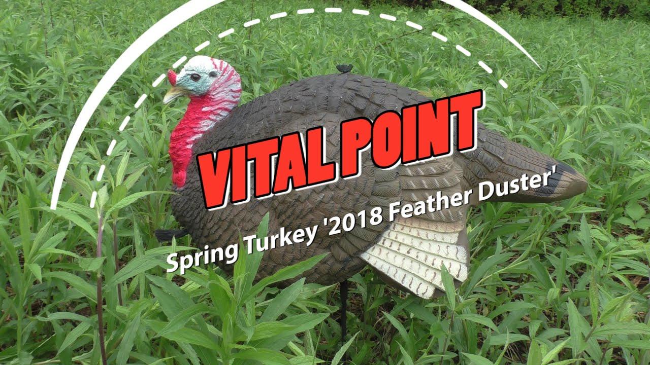Spring Turkey 'Feather Duster' Hunt - Huge Gobbler