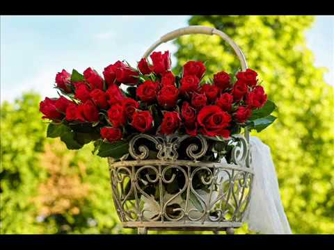 ♥-romantic-red-rose-bouquet-status-images-/-beautiful-bunch-of-rose-flower-wallpaper-pictures-♥