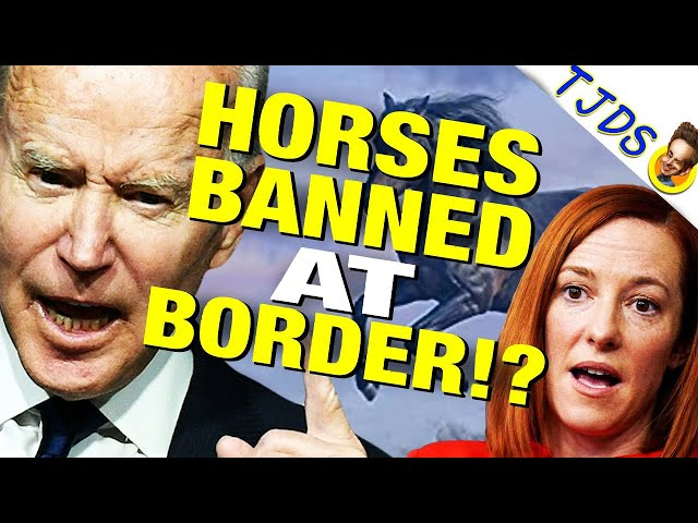 Biden Bans Horses At Border, Opens Gitmo For Refugees